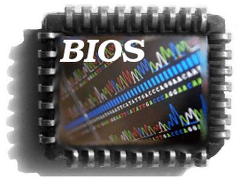 Как зайти в биос на ноутбуке hp. Два рабочих варианта перейти в настройки BIOS