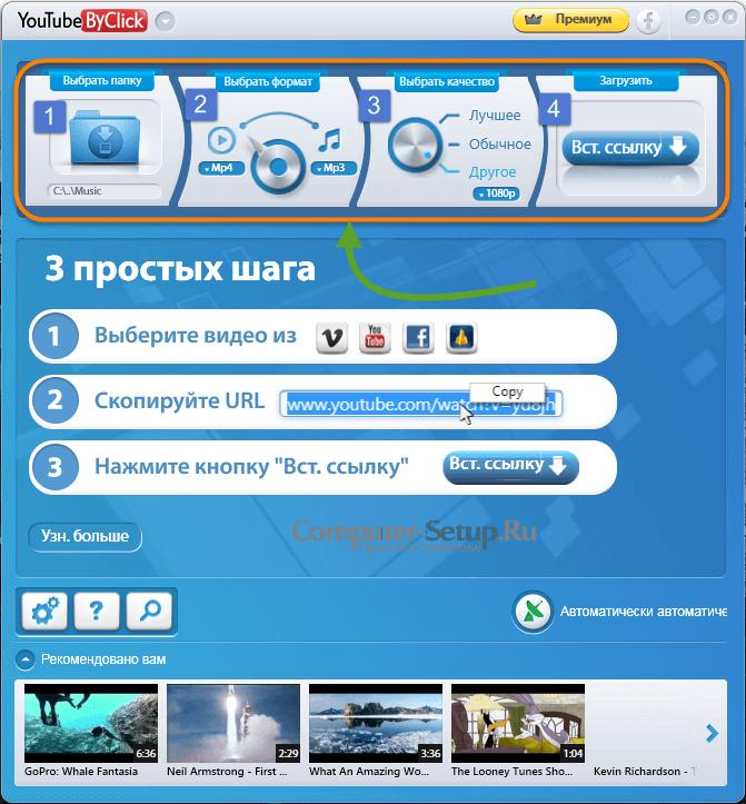 Програмку по скачке клипов с веба