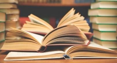 Лучшая читалка fb2 книг для компьютера: ТОП-10 приложений