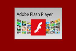 Как обновить Adobe Flash Player на компьютере – подробная инструкция!